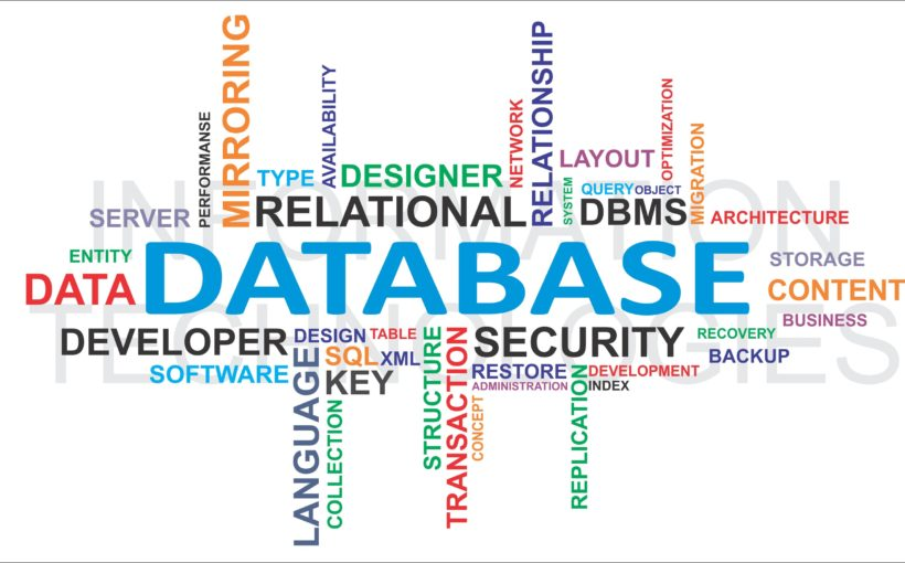Learn The Basics of Access Database
